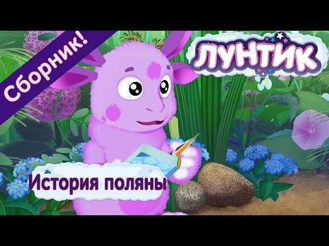 Лунтик - 🔥😂 История поляны😂🔥. Сборник мультиков (видео)