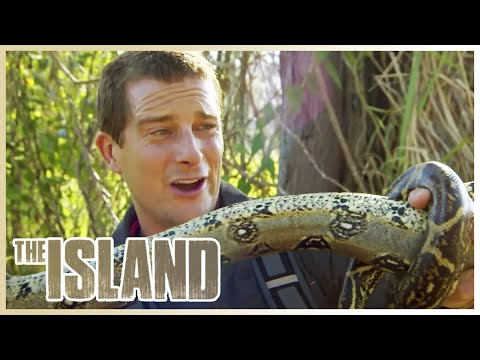 SURVIVING The Island 🏝️ | The Island With Bear Grylls | S01 E06 | Thrill Zone