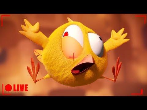 🔴 LIVE CARTOON | WHERE'S CHICKY | 🐥 Desenho Animado em português | Live Stream