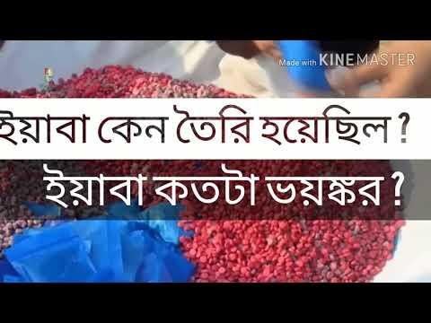 Video ইয়াবা পিনিক নেশা, দেখুন কিভাবে ইয়াবা সেবন করা হয়, Yaba Addiction in Bangladesh 2017 download in MP3, 3GP, MP4, WEBM, AVI, FLV January 2017