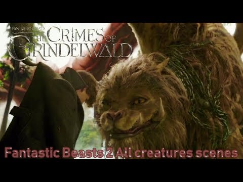 Fantastic Beasts 2 (2018) All creatures scenes | Final Battle with Grindelwald