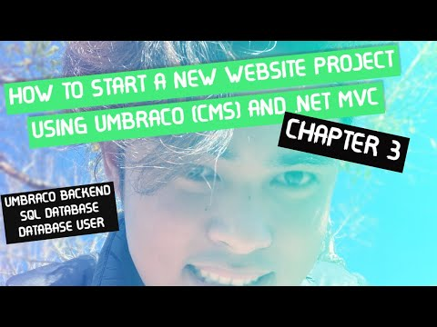 World's Fastest Way To Start A New Website Project - Chapter 3