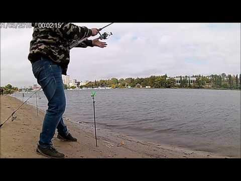 как ловить пеленгаса на хаджибее