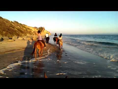 Santa Barbara - Anniversary Beach Horse Ride