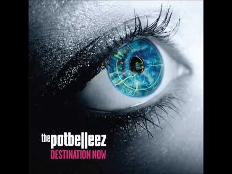 The Potbelleez - Twitch