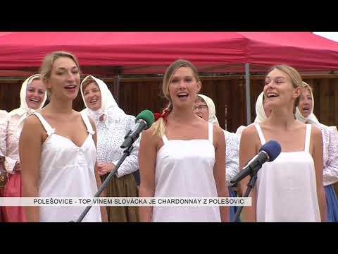 TVS: Deník TVS 23. 8. 2017