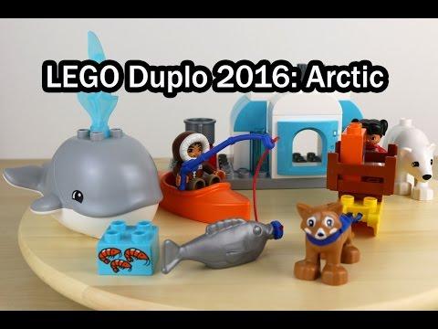 Vidéo LEGO Duplo 10803 : Les animaux de l'Arctique