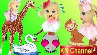 KN Channel giới thiệu video BÚP BÊ ĐI CHƠI SỞ THÚ KN Channel. Sắp tới ngày 1/6 ngày quốc tế thiếu nhi rồi, các bạn sẽ được...