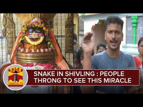 Snake-on-Shivling--People-Throng-Temple-to-See-this-Miracle-12-03-2016