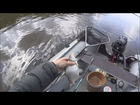 лещ с резиновой лодки