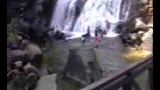Kota Tinggi Malaysia  city pictures gallery : Kota Tinggi Waterfall (Malaysia)