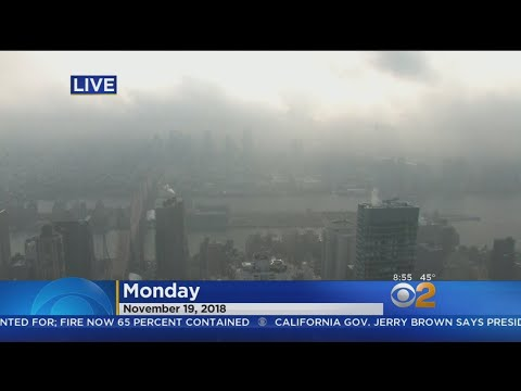 CBS2 News Update: 11/19 At 9 AM