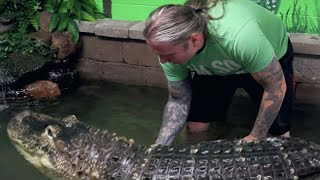 GETTING in the WATER with my BIG PET ALLIGATOR!! why not?   BRIAN BARCZYK by Brian Barczyk