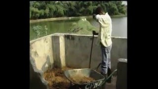 Fish culture in Congo Brazzaville – Part 1 The ownership of this video goes to FAO and was submitted to me by Alain Murekambanze (Burundi) Fish culture in Co...