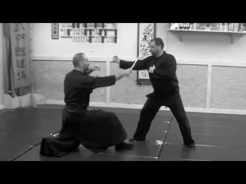 Shinden Fudo Ryu Daken Taijutsu Renshu Atlanta Bushinden Kai 2013