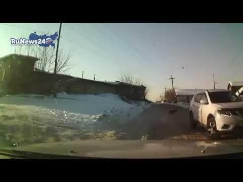 Kierowca staranował stado psów, które zaatakowały dziecko