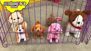 Skyheart have a lot of dogs and puppies to play with in our house - he thinks they're real! He trains them, feed them, plays with them... and more! The dog toys in this video are: - Lucy The Dog, you can teach her tricks and she obeys your commands (Like sit, play dead, dance, shake hands, heads up, bark, eat, etc.)- Fur real My Poopin Pup, feed her and she will poop!- And some Toys R Us Dogs[CLICK HERE] Subscribe to our channel for more fun and toyshttp://youtube.com/c/SkyheartsToysChannel?sub_confirmation=1
