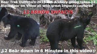 Video 12 Bear arrowed in 6 minute @ Bear Trak Outfitters 2016 Bow Only ARROW IMPACT Compilation POV MP3, 3GP, MP4, WEBM, AVI, FLV Agustus 2017