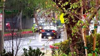 Culver City (CA) United States  city photos gallery : Video Compilation Pass Through Traffic Residential Neighborhood Culver City CA USA