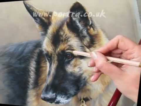 speed painting dogs