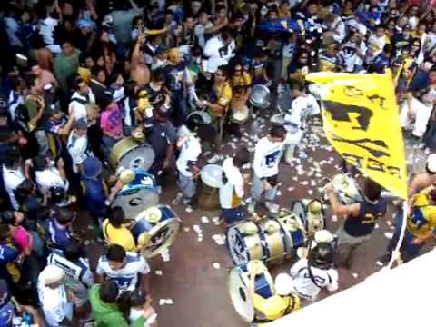 La Rebel en acción. - La Rebel - Pumas