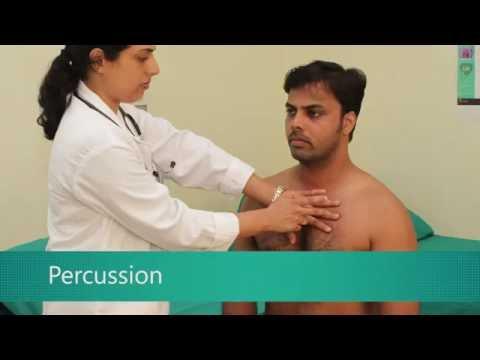 MedSim - Cardiovascular System Percussion