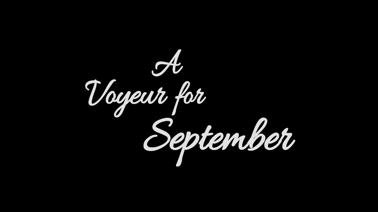 Team Meat Announces 'A Voyeur for September'