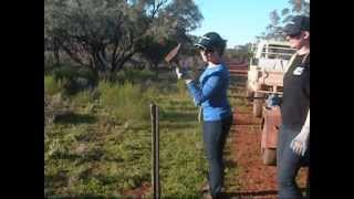 North Yelta Australia  city photos : How to Build a Fence