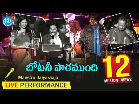 Botany Patamundhi Song - Maestro Ilaiyaraaja Music Concert 2013 - Telugu - California, USA