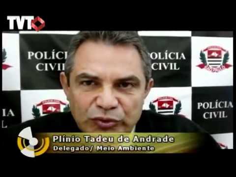 Inquérito é aberto para apurar o crime de trabalho escravo em Itaquaquecetuba - Rede TVT