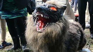 Японское пугало эфектно разогнало всех животных и птиц