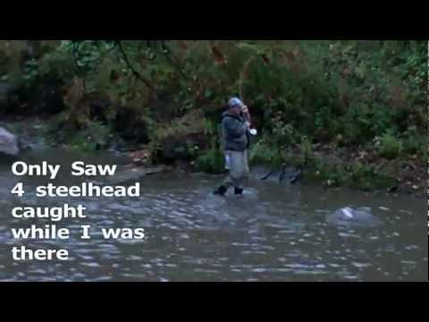 Steelhead Fishing Erie Pa Walnut Creek 10-14-2011