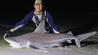 Shark fishing from beach in Panama City, Florida - Surf fishing for sharks