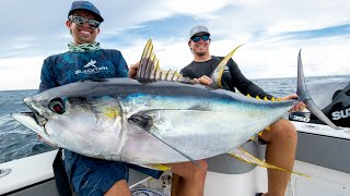Video Monster Yellowfin Tuna!! MP3, 3GP, MP4, WEBM, AVI, FLV September 2019