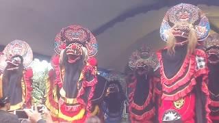 Kiprah barong kreasi HEWAH HEWEH cruw feat PUTRO MANDURO panggungrejo