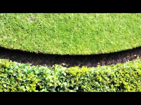 Traditional Lawn Edging (видео)