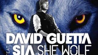 David Guetta and Sia She Wolf Falling to Pieces Michael