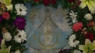 Fiestas patronales Jerez de García Salinas