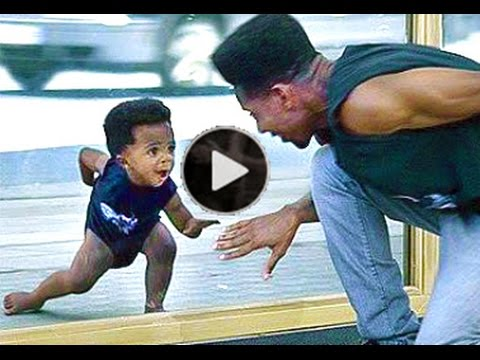 funny videos that make you laugh so hard you cry ,Best Funny Video 2014,