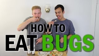 How To Eat Bugs