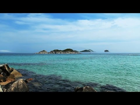 Relaxing Instrumental Music - Peaceful - 1080p HD Landscape Nature Scenes