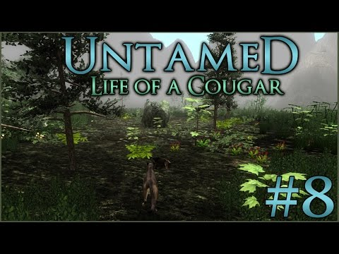 Cougar Cub in the Night || Untamed: Life of a Cougar - Episode #8