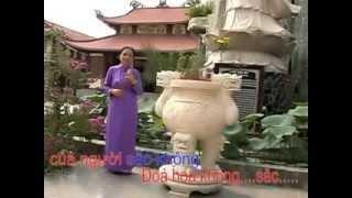Khúc Ca Chân Thường Dvd Cổ Nhạc Phật Giáo  - TT. Thích Thiện Hữu