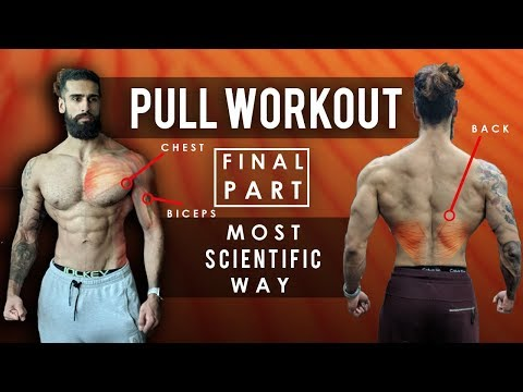 Beard oil - PULL WORKOUT - Part 2 (Most Scientific Way)  Lats, Hamstrings, Glutes, Biceps, Abs, Forearms