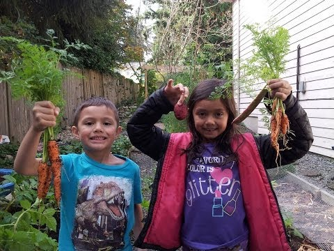 Organic Gardening Kids In the Garden 2013
