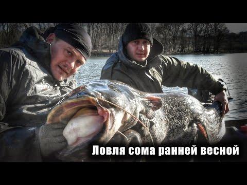 Ловля сома на малых реках весной