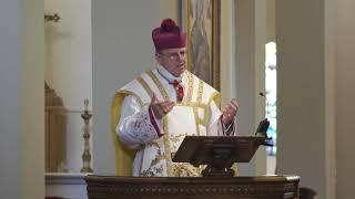 Video Saint John the Baptist, by Bishop Donald J. Sanborn MP3, 3GP, MP4, WEBM, AVI, FLV November 2018