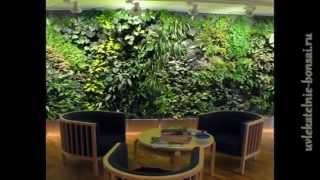 Висячие сады. Фитодизайн.