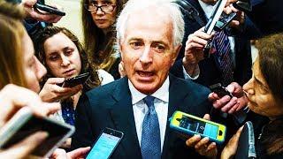 Republican Senator Says Trump Is Debasing Nation!