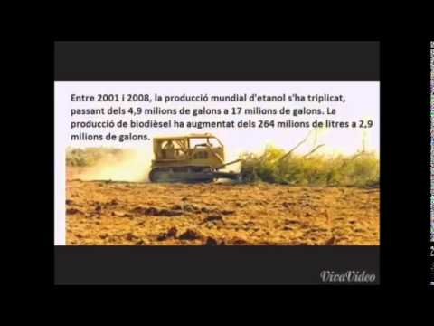 Destrucció de biocombustibles